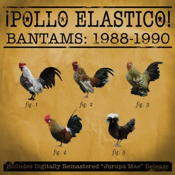 "Pollo Elastico ""Bantams"""